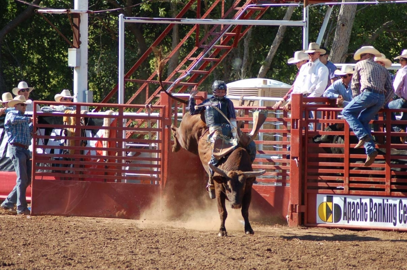 2012 Rodeo Results Apache Stampede Prca Rodeo